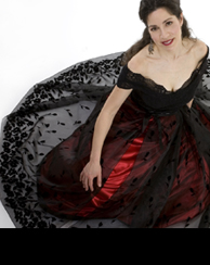 Black organza skirt with Velvet border